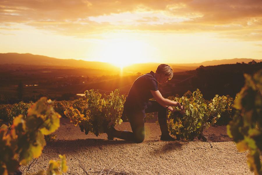 wijnmaakster Corlea Fourie van Bosman Family Vineyards